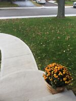 Landscaping -Fall Clean Up Time
