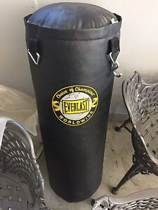 Professional Everlast Boxing Bag and Boxing Gloves - Like New