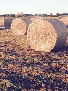 Hay rounds Colac Colac-Otway Area Preview