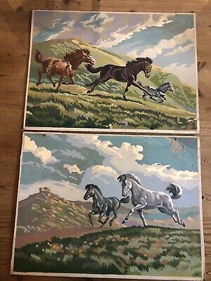 Vintage Paint By Numbers Pair Horse Pictures Retro Kitsch 1960s Mid Century