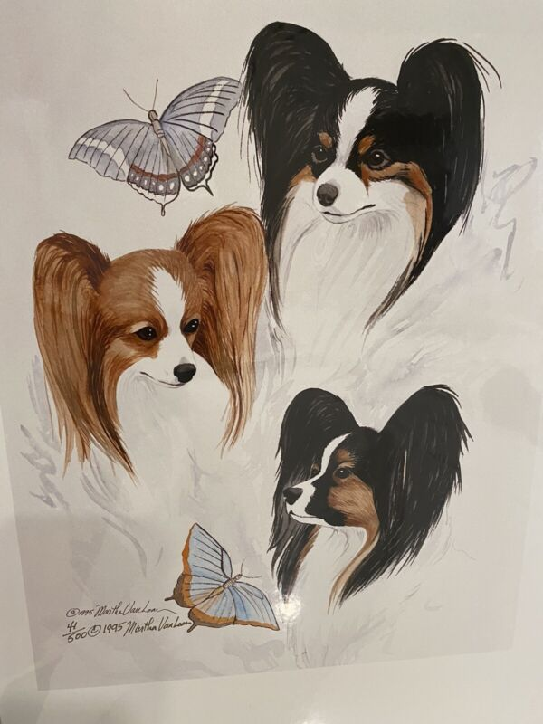Papillon Thee Heads Study Ltd Ed Print By Van Loan