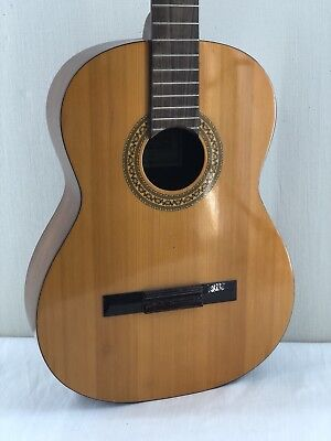 Angelica Concerto Wood Acoustic Vintage Guitar Japan Almost Mint Cond
