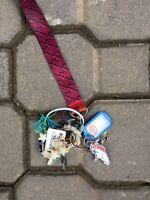 Key and keychain found