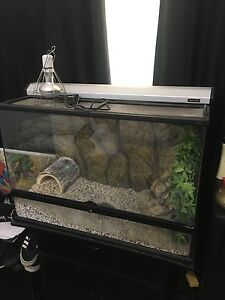 Reptile enclosure Lynwood Canning Area Preview