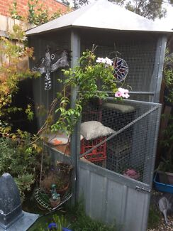 Large Cage - bird, cat, garden shed?