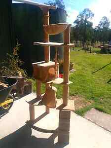 Cat climbing toy Clarence Town Dungog Area Preview