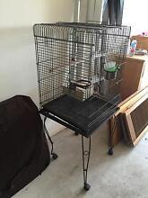 Parakeet cage Mountain Creek Maroochydore Area Preview