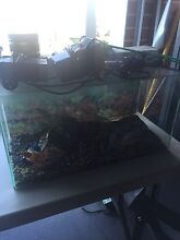 Fish tank Forrestdale Armadale Area Preview