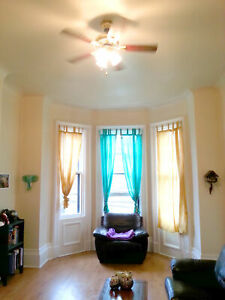 1 bedroom for a steal in the heart of Saint John!