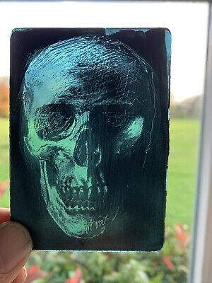stained glass panel Skull