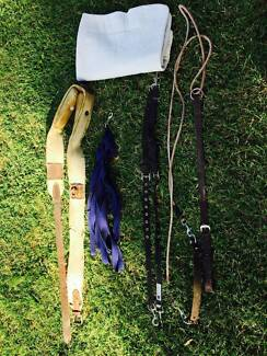 Horse Equine Lunging Kit Dangarsleigh Armidale City Preview