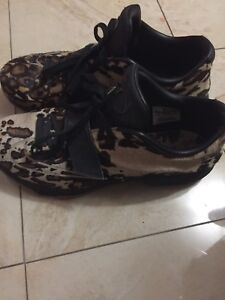KD 7 EXT QS LONGHORN STATE