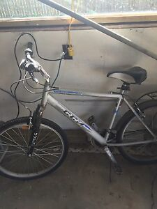 Large Adult bike for sale