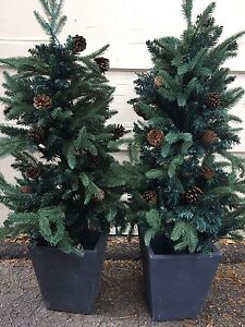 Pre-Lit Potted Trees - 4 feet