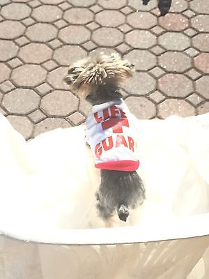 Lifeguard t Shirt XS Dog  - Dog Lifeguard Shirt