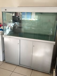 Extra Large FISH TANK Croydon Burwood Area Preview