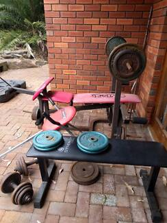 Home gym, bench, abs trainer (weights, bars, dumbbells not included)