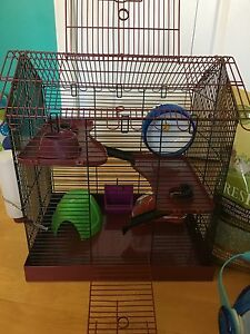 Amazing hamster/mouse cage +accessories