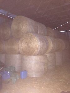 4X5 hard core Hay. Trade for Farm equipment