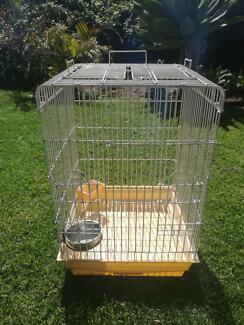 Cocky / Bird Cage