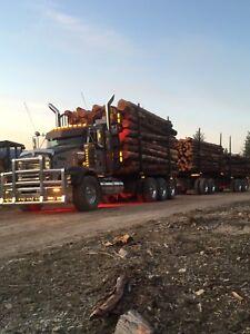 Logging truck driving job