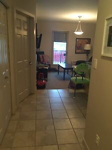 1 bedroom furnished apartment downtown $1400