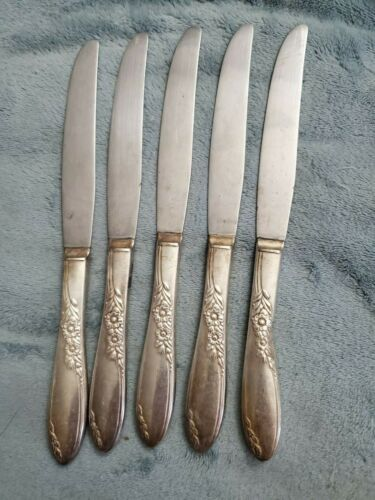 Wm A Rogers Country Lane, Oneida Sectional Silverware Knives (5)