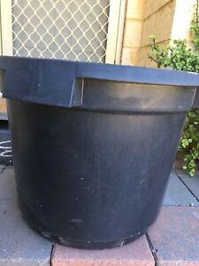Large Plastic Pots For Trees In Perth Region Wa Gumtree