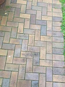 Used Garden Pavers Randwick Eastern Suburbs Preview