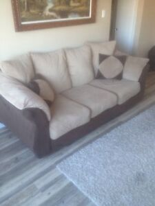 Couch & Love seat & Rug $100