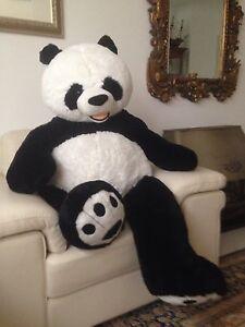 Huge panda teddy bear life size soft & fluffy Bruce Belconnen Area Preview