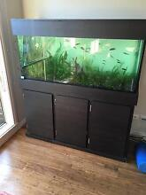 4ft Fish Tank Complete Set up Rowville Knox Area Preview