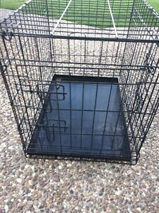 Dog crate Boronia Heights Logan Area Preview