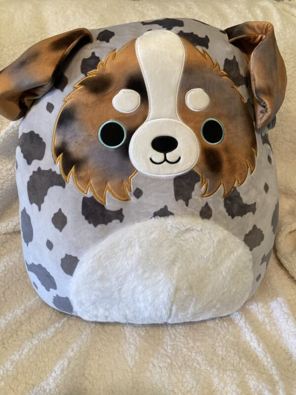 New With Tags Squishmallow Raylor the Puppy Dog  Australian Shepherd