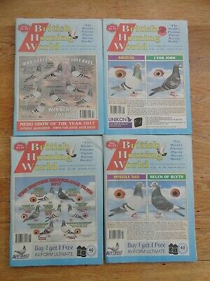 4x British Homing World racing pigeon birds magazines back issue November 2017
