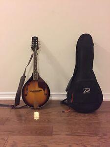 Fender Mandolin fm-100