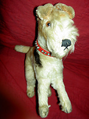 Antique mohair Terrier dog toy, with glass eyes, original studded leather collar
