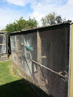 4 bay aviary 3.6x3000x1850 Doveton Casey Area Preview
