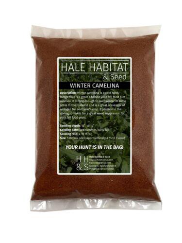 Winter Camelina Food Plot Seed - Whitetail Deer Brassica Forage - 5 lb Bag