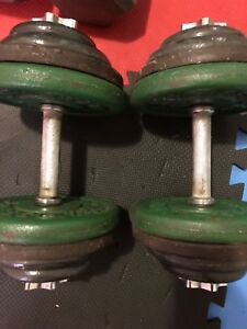 45lbs each dumbells