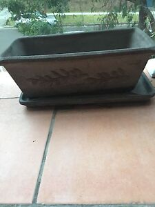 Rectangle plant pots with tray Cronulla Sutherland Area Preview