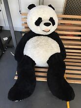 Giant panda bear Templestowe Lower Manningham Area Preview