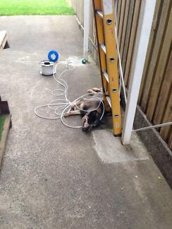 Warnair Industries Electrical