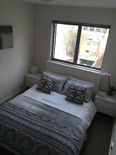 TWO Double Rooms for Rent in CBD Modern Boutique Apartment East Perth Perth City Preview
