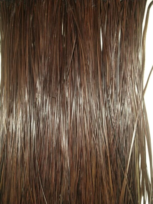 Long leaf pine needles Dyed Dark Brown Glycerin Treated