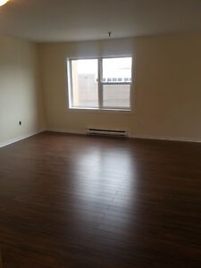 BEAUTIFUL 2 BEDROOM IN CENTRAL HALIFAX  RENOVATED FEBRUARY 1ST