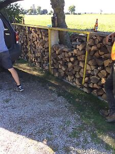 Dry Fire Wood Ready to Burn! London Ontario image 1