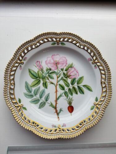 Flora Danica Royal Copenhagen Denmark - Rosa Villosa Horn