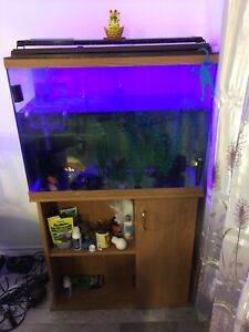 Aquarium with stand  35gallons