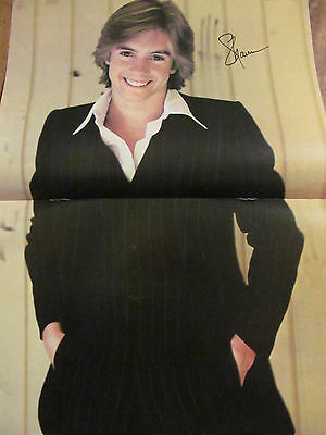 Shaun Cassidy, Two Page Vintage Centerfold Poster